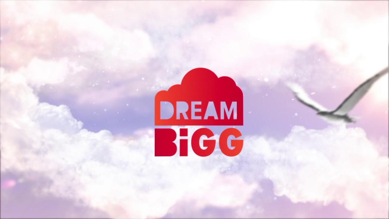 dreambigg